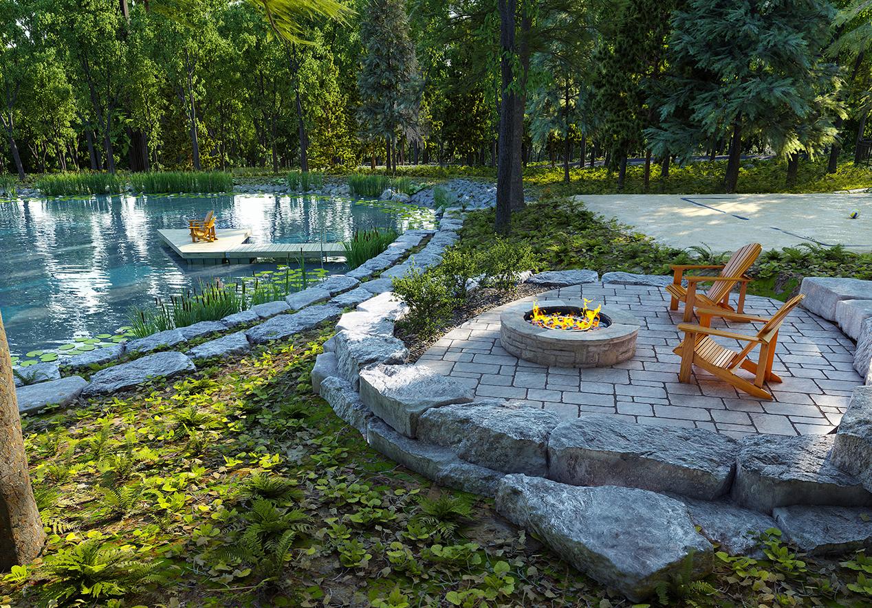 Pond_Arborescence